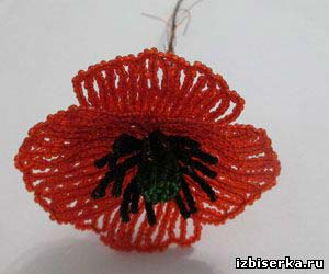 Мак из бисера, Полевые цветы из бисера