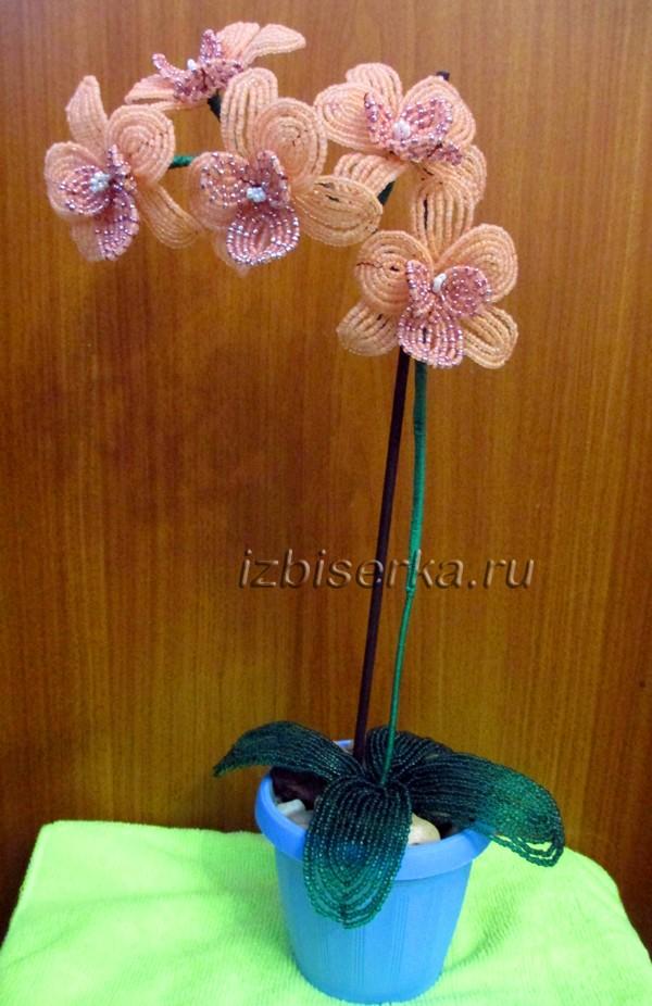 Фото орхидеи из бисера