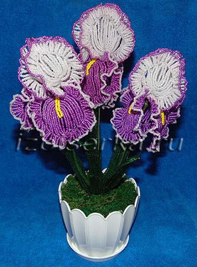 Ирис из бисера Цветы из бисера 16