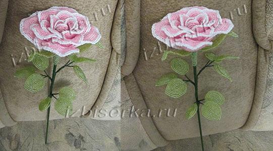 Роза из бисера (+ схема)